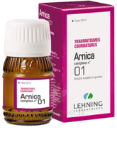 Lehning Arnica Complexe N° 1 Solution Buvable En Gouttes Fl/30ml à Talence