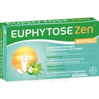 Euphytosezen Comprimés B/30 à Talence