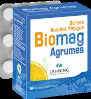 Lehning BIOMAG Comprimés à croquer agrumes B/90 à Talence