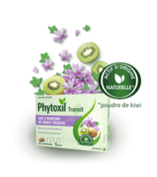 Phytoxil Transit Comprimés B/20 à Talence