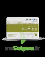 Granions De Bismuth 2 Mg/2 Ml S Buv 10amp/2ml à Talence