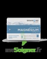 Granions De Magnesium 3,82 Mg/2 Ml S Buv 30amp/2ml à Talence