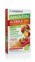 Arkovital Acérola 1000 Comprimés à croquer B/30 à Talence