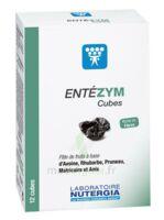 Entezym Cube à mâcher équilibre flore intestinale B/12 à Talence
