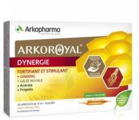 Arkoroyal Dynergie Ginseng Gelée Royale Propolis Solution Buvable 20 Ampoules/10ml à Talence