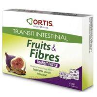 ORTIS FRUITS & FIBRES Cube à mâcher transit facile B/12 à Talence