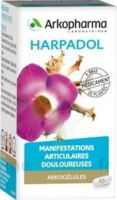 ARKOGELULES HARPAGOPHYTON, 150 gélules à Talence