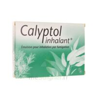 Calyptol Inhalant, émulsion Pour Inhalation Par Fumigation à Talence