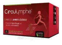 Santé Verte Circulymphe Triple Actions B/30 à Talence