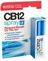 CB 12 Spray haleine fraîche 15ml à Talence