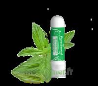 PURESSENTIEL RESPIRATOIRE Inhalation nasal 19 huiles essentielles à Talence