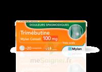 TRIMEBUTINE MYLAN CONSEIL 100 mg, comprimé à Talence
