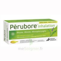 Perubore Caps Inhalation Par Vapeur Inhalation Plq/15 à Talence