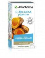 Arkogelules Curcuma Pipérine Gélules Fl/45 à Talence
