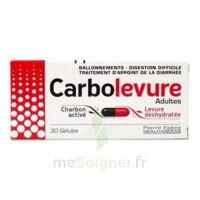 Carbolevure Gélules Adulte Plq/30 à Talence