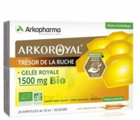 Arkoroyal Gelée royale bio 1500 mg Solution buvable 20 Ampoules/10ml à Talence