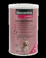 Biocanina Lait poudre maternisé B/400g à Talence