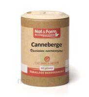 Nat&form Eco Responsable Canneberge Gélules B/60 à Talence