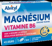 Govital Magnésium Vitamine B6 Comprimés B/45 à Talence