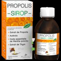 3 CHENES PROPOLIS Sirop Fl/200ml à Talence