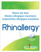 Boiron Rhinallergy Comprimés B/40 à Talence