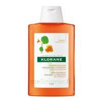 Klorane Capucine Shampooing 200ml à Talence