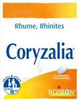 Boiron Coryzalia Comprimés Orodispersibles à Talence