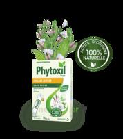 Phytoxil Toux Sans Sucre Sirop Adulte Enfant +6 Ans 12 Sachets/10ml à Talence