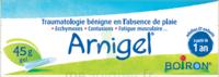 Boiron Arnigel Gel T/45g à Talence