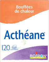 Boiron Acthéane Comprimés B/120 à Talence